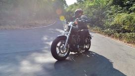 Harley-Davidson 1200 Custom 2016 STD