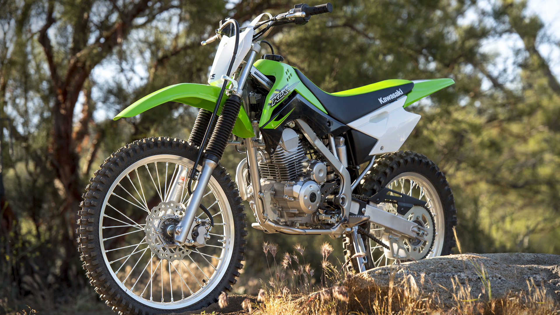 Kawasaki KLX 140 2017 STD