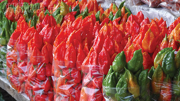 As were those fiery bhut jholokia chillies that are so famous in the North East and Mawlynnong's living root bridge