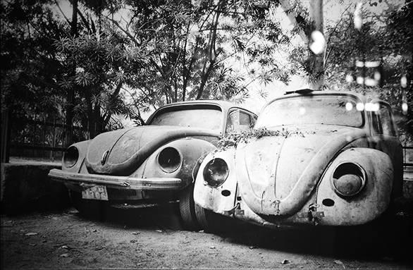 car graveyards (16)
