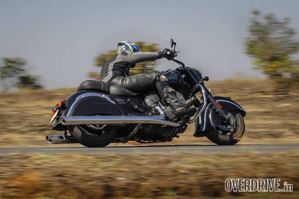 Indian Dark Horse (13)