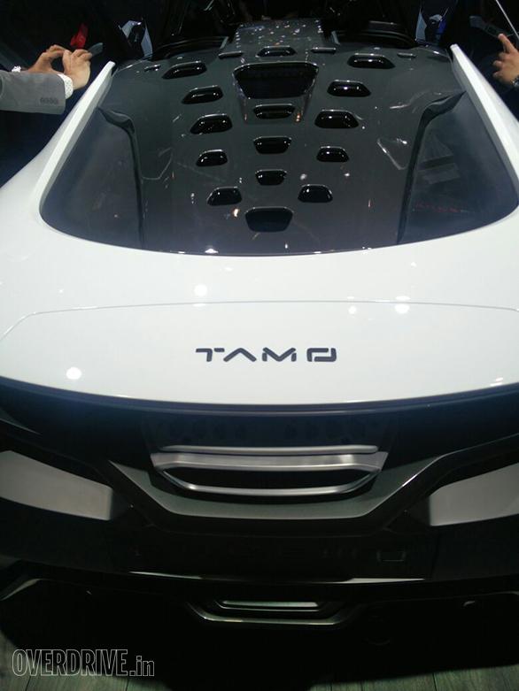 TAMO (6)