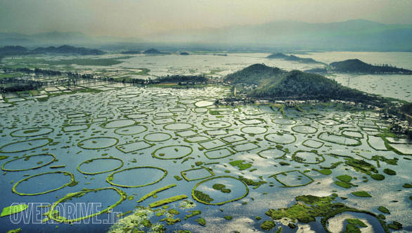The magnificent Loktak lake is situated a few kilometres from Imphal, the capital of Manipur. The lake stretches across 980 sq,km and is quite a spectacular sight. The green circles you see are called Phumdis.  Villagers use these for fishing too,