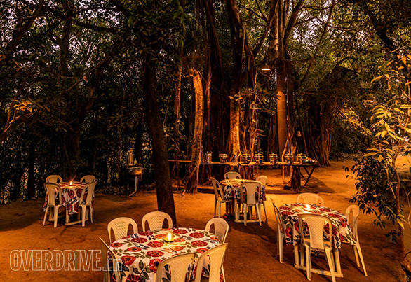 Dinner at Ekant is served outdoors under the forest canopy
