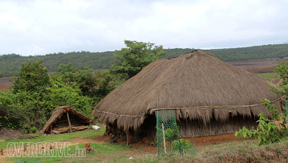 A small village with thatched roof huts inside the sanctuary