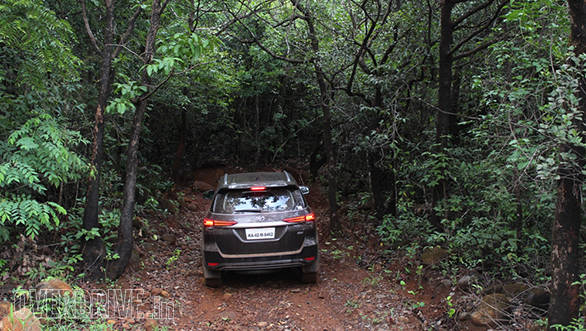 Entering the dense forest near Patgao
