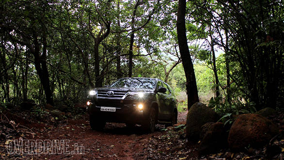 These jungles are so thick that even in the day you need to drive with the lights switched on