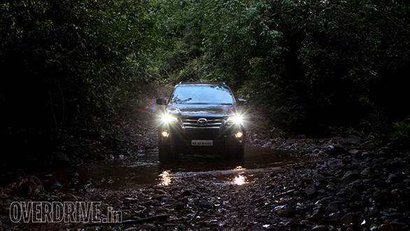 Deep in the forest, headlights shining bright...