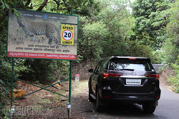 The Amba Ghat region is lined with many wildlife signboards