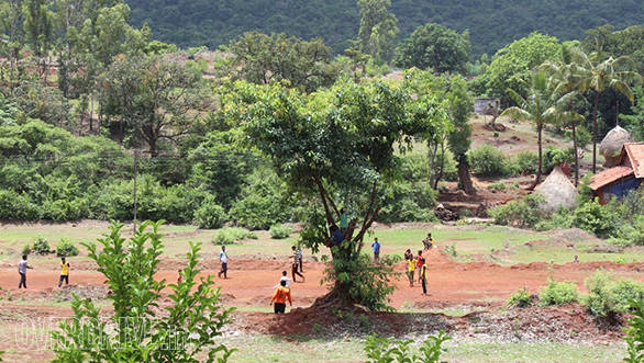Cricket being played in a village complete with spectators sitting in trees