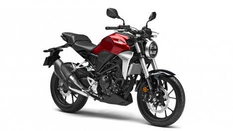 Honda CB300R 2019 STD