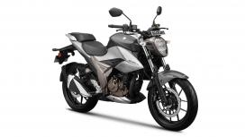 Suzuki Gixxer 250 2019 STD
