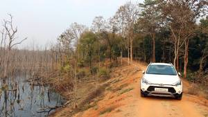 Exploring the forests of Chhatisgarh