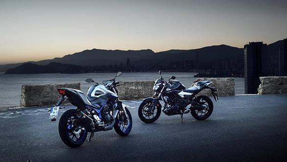 2016 Yamaha MT 03 (9)
