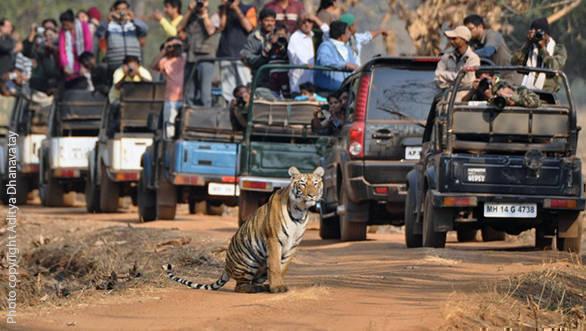 Image clicked by Aditya Dhanavatay