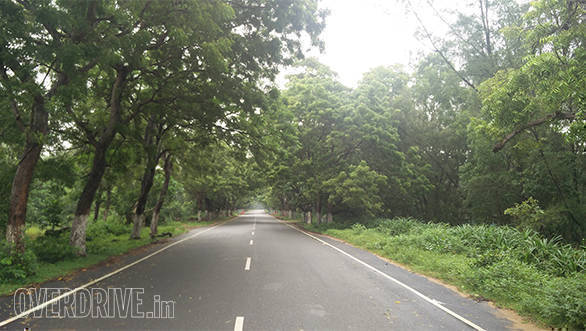 Best driving roads Bhubaneshwar to Konark Sun Temple (3)