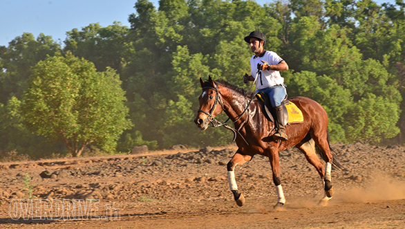 8-Krish-Saigal-rode-his-horse-Atlantic-Star-suberbly-and-finished-first-in-the-40-Km-Endurance-Category