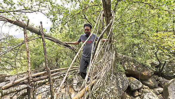 Our contest winner Binil Varghese checks out the longest Living Root Bridge