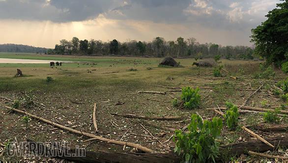 BMW Motorrad Deccan Safari | Tusker BMW Motorrad | Nagarhole National Park ambient