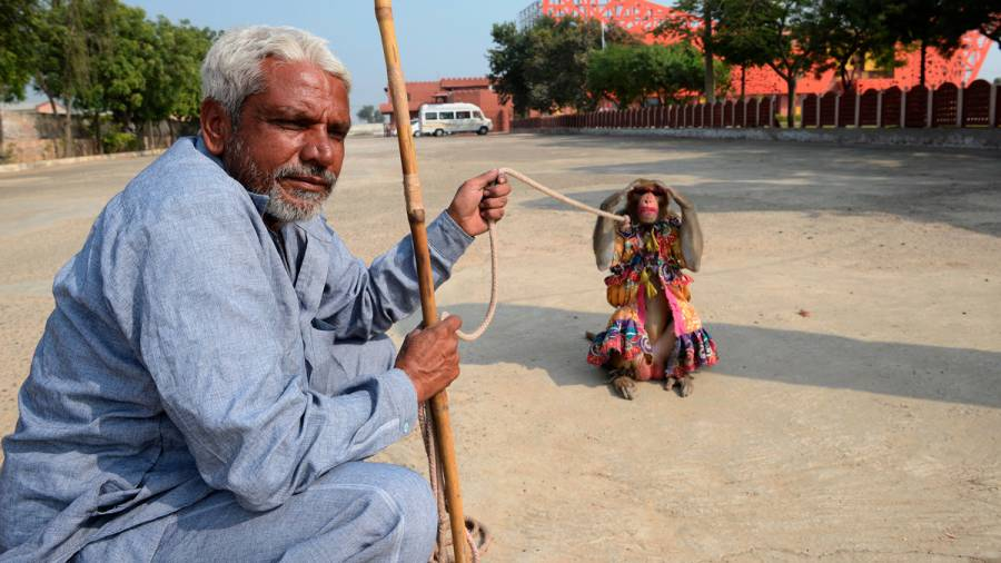Indian Highways – The common and strange sights