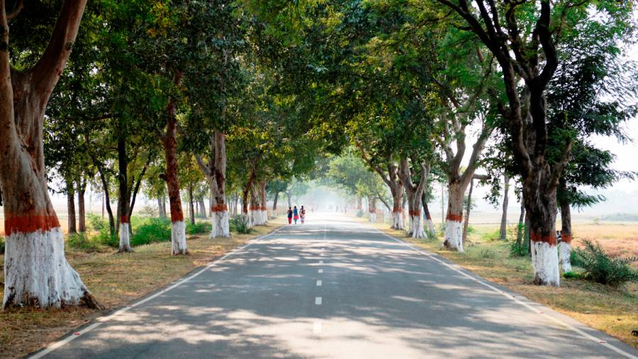 Indian Highways -And the disappearance of trees and milestones